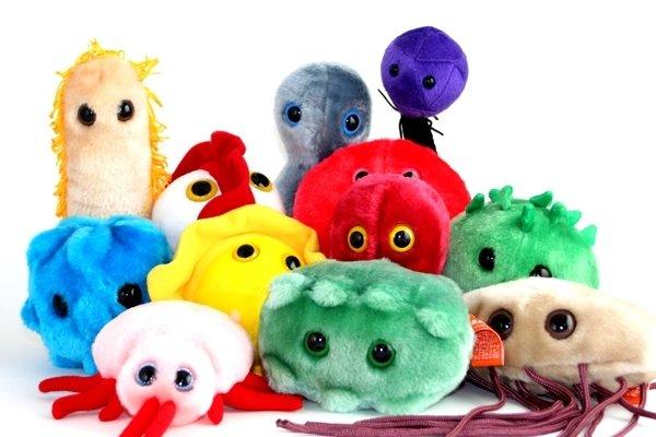 Home toys games plush toys giant microbes giant microbes