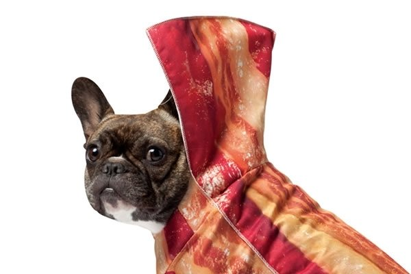 http://static.neatoshop.com/images/product/27/6127/Bacon-Dog-Costume_29797-l.jpg?v=29797