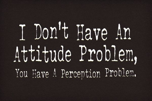 I Don't Have an Attitude Problem Quotes