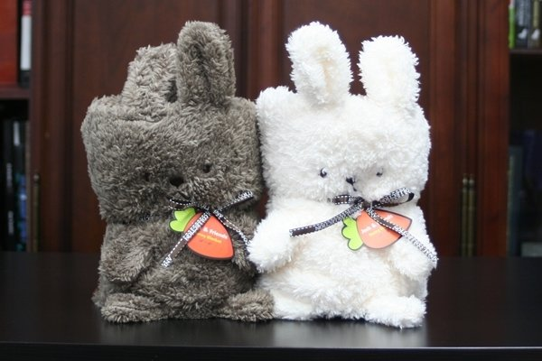 Jack & Friends Cuddly Blanket - Bunny
